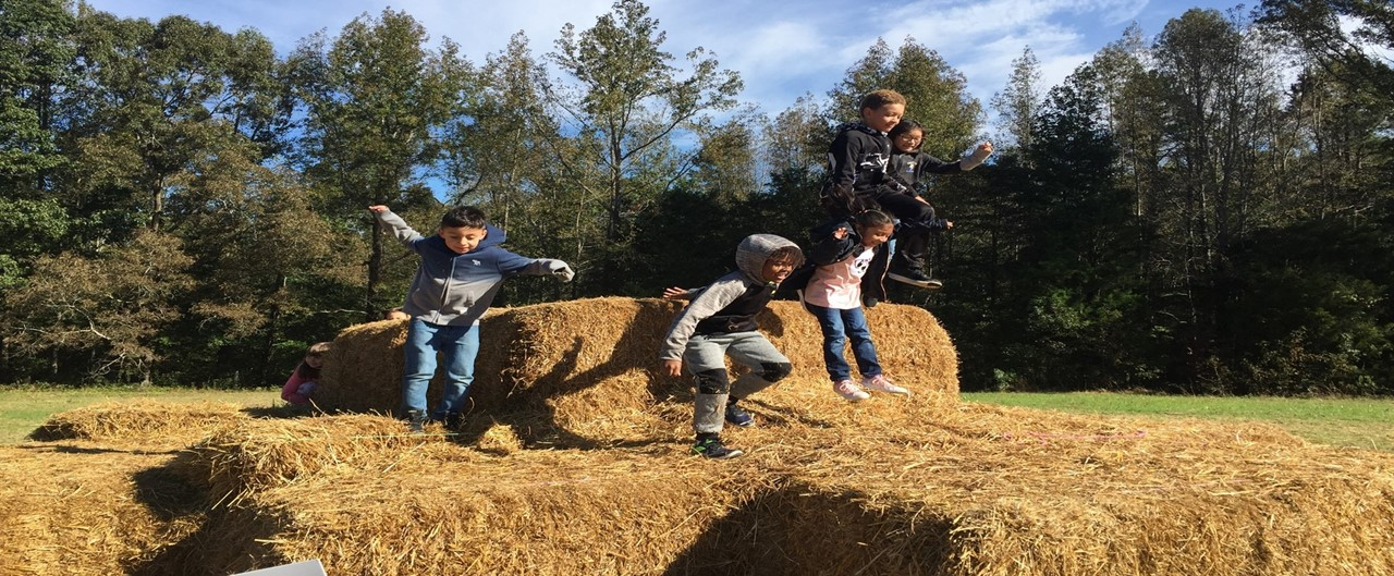 Grade 2 Whitaker Farm Field Trip Hay Jumping