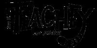 Teachey Tiger Logo